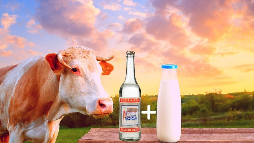 Коктейль «Водка с молоком»